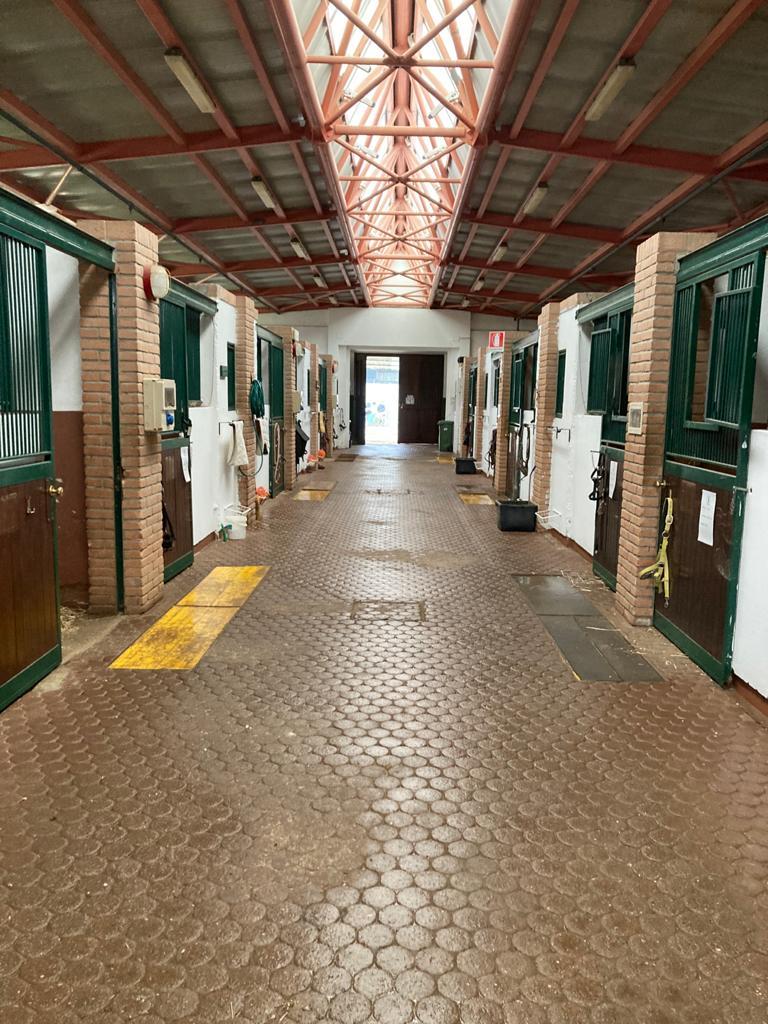 Pensione Cavalli Bergamo Centro Ippico La Rosa Bianca Bergamo